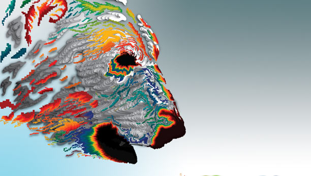 Abstract of a Polar Bear